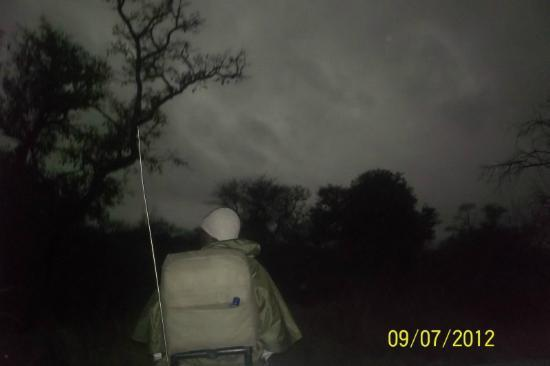 Naledi Bushcamp and Enkoveni Camp: The morning the sky went black!