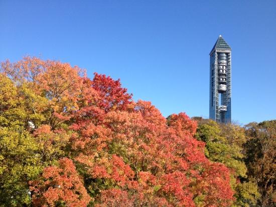 Нагоя, Япония: Higashi Yama