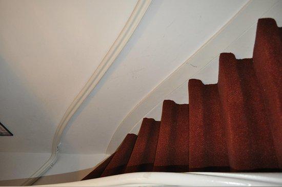 تيوليب أو أمستردام بي آند بي: The steep stairs 