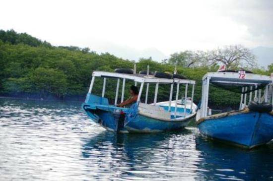 Menjangan Island: These are the slow boats, trip quite plesant