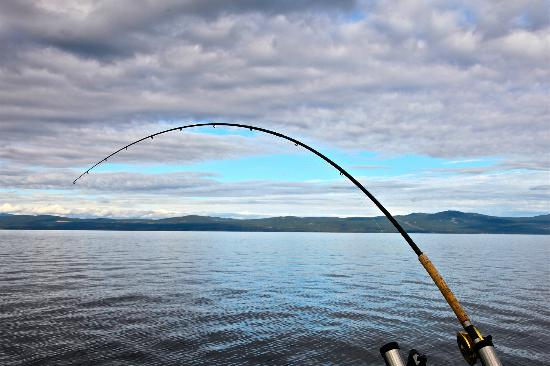 Van Isle Fishing and Marine Adventures: Fishing