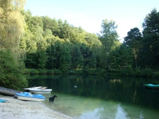 The Birches at Steep Acres Farm: The Birches Private Lake & Swimming Pool