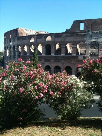 Transfers Rome Day Tours