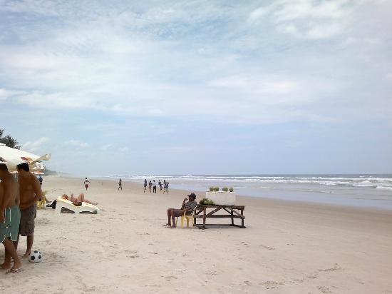 Milionarios Beach : DIA MARAVILHOSO, BARRACA COM EXCELENTE PEIXE. TUDO DE BOM. COM SOL, RECOMENDO.