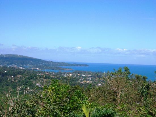 هوتل موكينج بيرد هيل: Ausblick von der Terrasse auf Port Antonio 