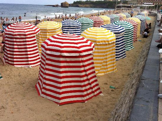 La Côte des Basques : August colour!