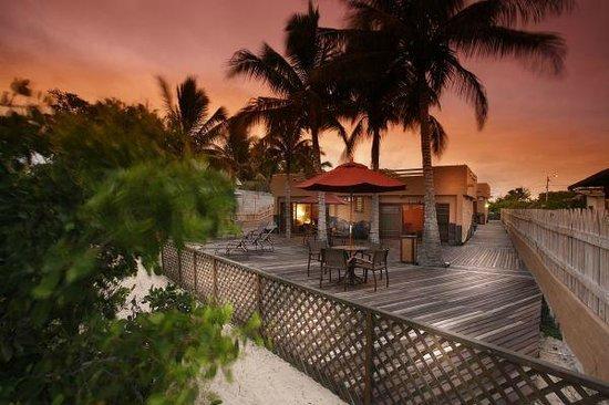 Red Mangrove Aventura Lodge : Isabela Lodge Deck