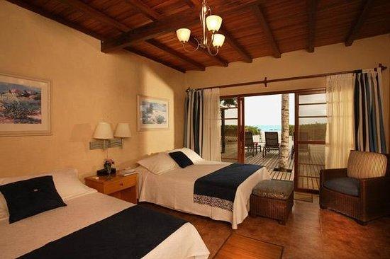 Red Mangrove Aventura Lodge : Room at Isabela Lodge
