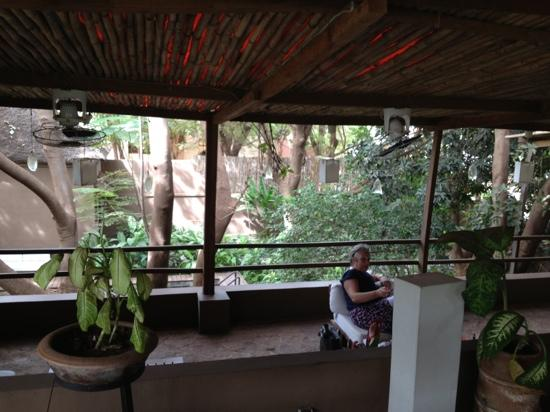 Comme Chez Soi - Bistro: the garden