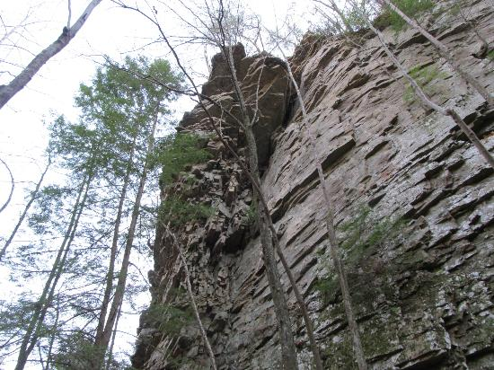 Cloudland Canyon State Park: From below