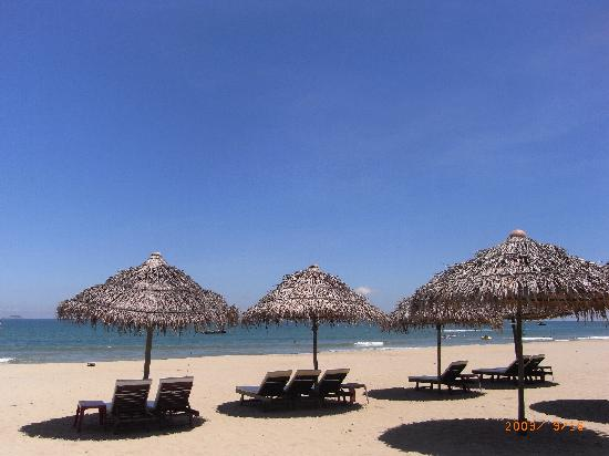 Cua Dai Beach: sun beds