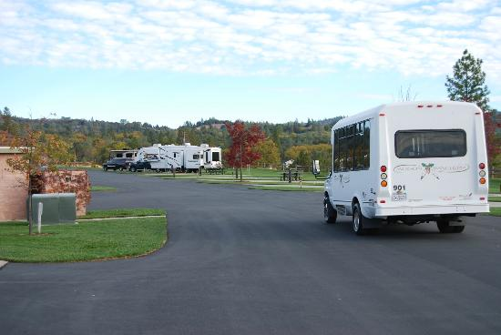 Jackson Rancheria RV Park : Shuttle to casino drives by every 20 minutes.
