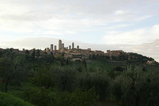 Scenic wine tours in Tuscany: San Gimignano
