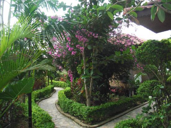 Princess Garden Hotel: Garden