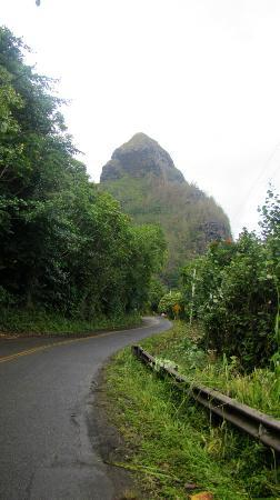 St. Regis Princeville Resort: Ape Head -- road past Hanalei