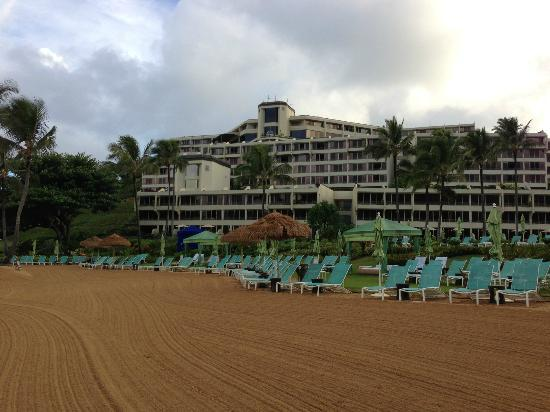 St. Regis Princeville Resort: View from the beach back towards the pool