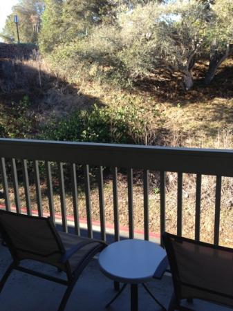 Hilton Garden Inn Monterey: hillside view