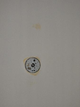 Radnor Bayswater Hotel: Broken smoke detector with stains on ceiling
