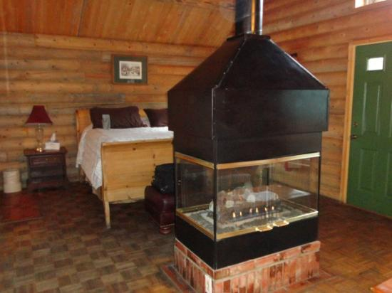 ‪‪Mt. Charleston Lodge‬: Fireplace & bedroom