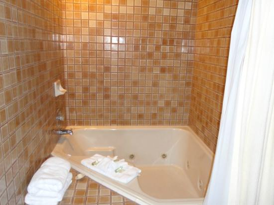 Mt. Charleston Lodge: Shower & jetted tub