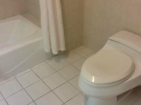 Parkview Hotel: Toilet and bathtub, which is strangely lower than the toilet.