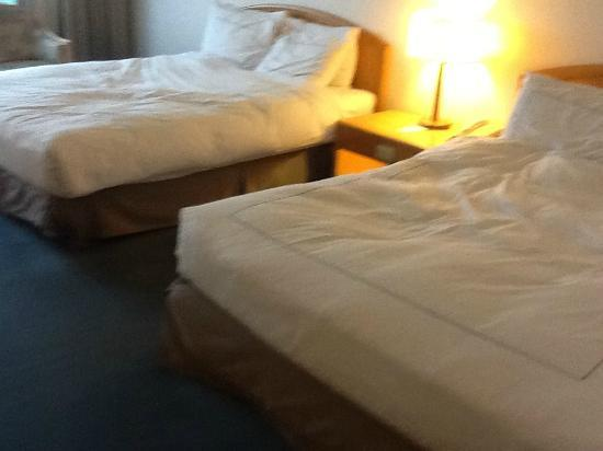 Parkview Hotel: Double beds