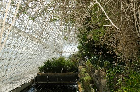 Biosphere 2: inside above the ocean enviroment