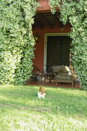 San Miguel del Monte, Argentinië: the dogs will join you for a walk