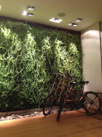 Casa Calma Hotel: lobby with free bikes