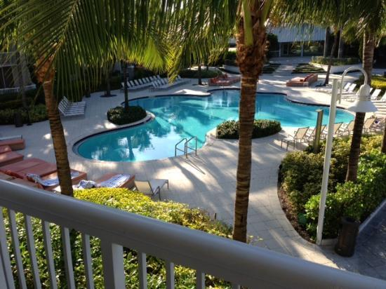 Hilton Fort Lauderdale Marina: View of Pool from Balconyh