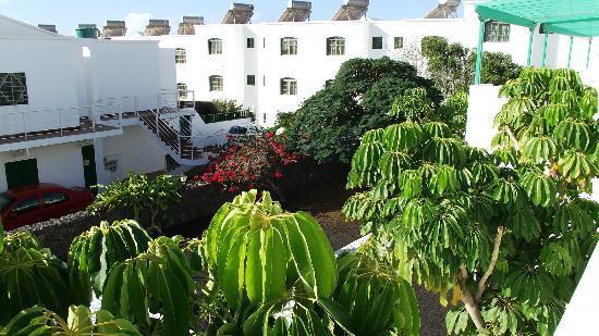 Apartamentos Aloe : view from room