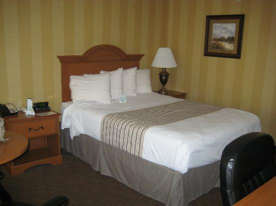 Central Plaza Hotel: Queen bed