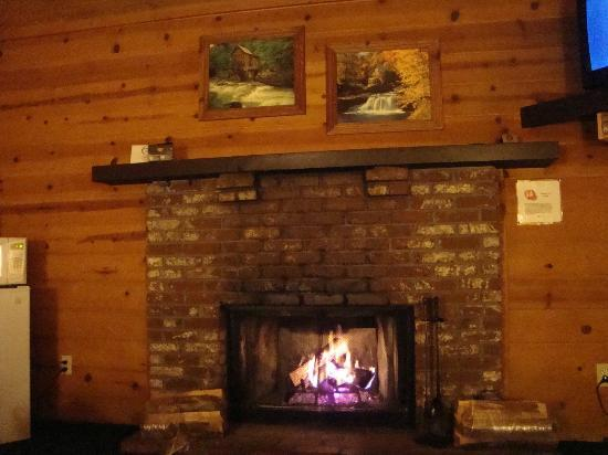 Cozy Hollow Lodge: Cozy and warm, couldn't ask for anything more. =)