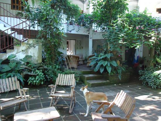 La Mariposa Spanish School and Eco Hotel: The terrace