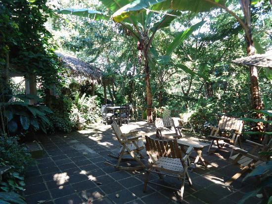 La Mariposa Spanish School and Eco Hotel: The garden terrace