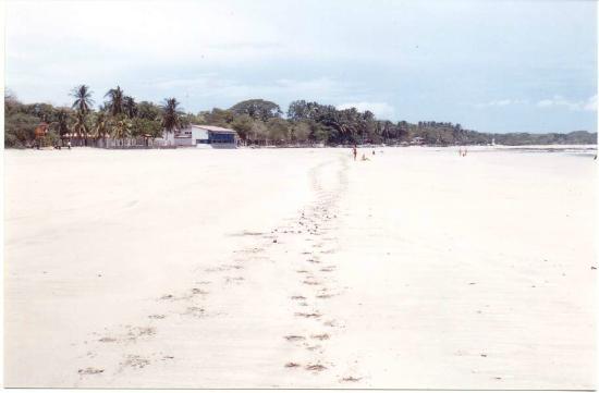 Tamarindo Beach: paradiso del surf