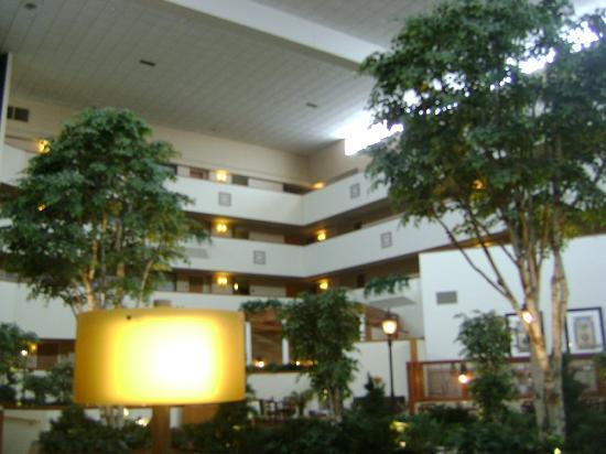 escritorio picture of sheraton minneapolis west hotel. Black Bedroom Furniture Sets. Home Design Ideas