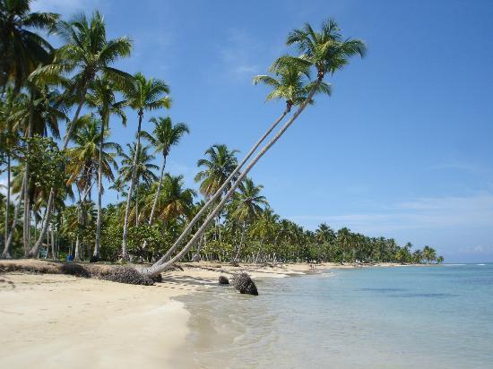 Grand Bahia Principe El Portillo : View down the beach