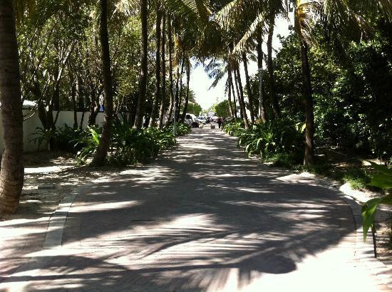 Townhouse Hotel: caminho da praia...bem pertinho!