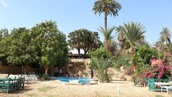 Al Baeirat Hotel: Blick auf Pool unten und Restaurant oben