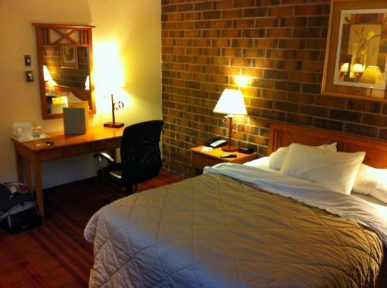 Plaza Inn Hotel: bed / desk area