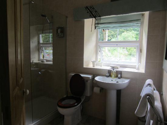 Tyn-y-Fron Luxury B&B: Room 1 bathroom