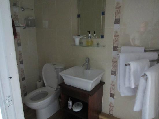 Tyn-y-Fron B&B: Room 3 toilet