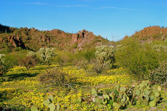 Hacienda Linda : Get your hike on, nearby trails!