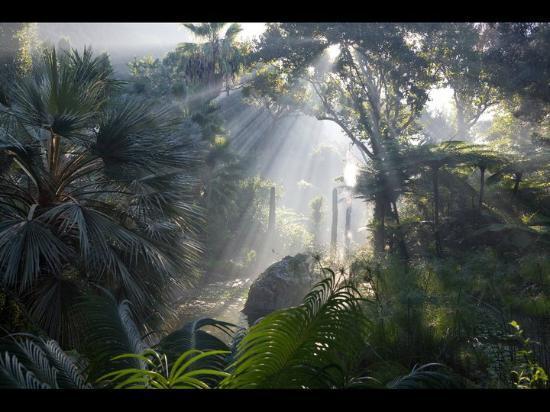 Giardini La Mortella : raggi di sole