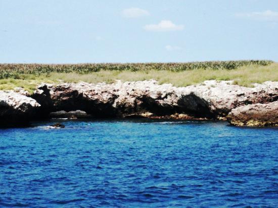 Marietas Islands: Islas Mariettas - Praia escondida