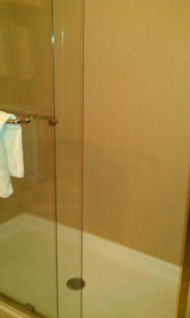Holiday Inn Express & Suites Salina: Shower