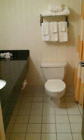 Fairfield Inn Joplin: Bathroom - doesn't coordinate