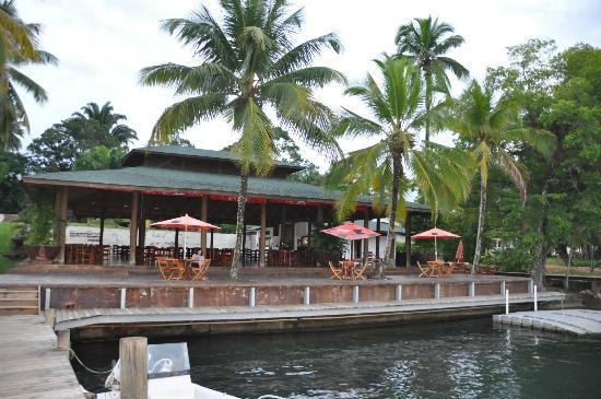 Hotel Marina & Yacht Club Nana Juana: restaurante