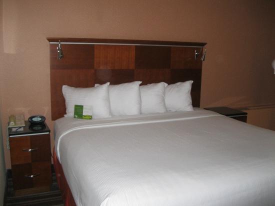 Chicago's Essex Inn: Bed